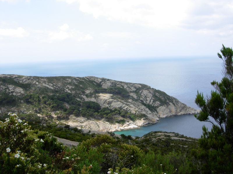 crociera a vela isola montecristo