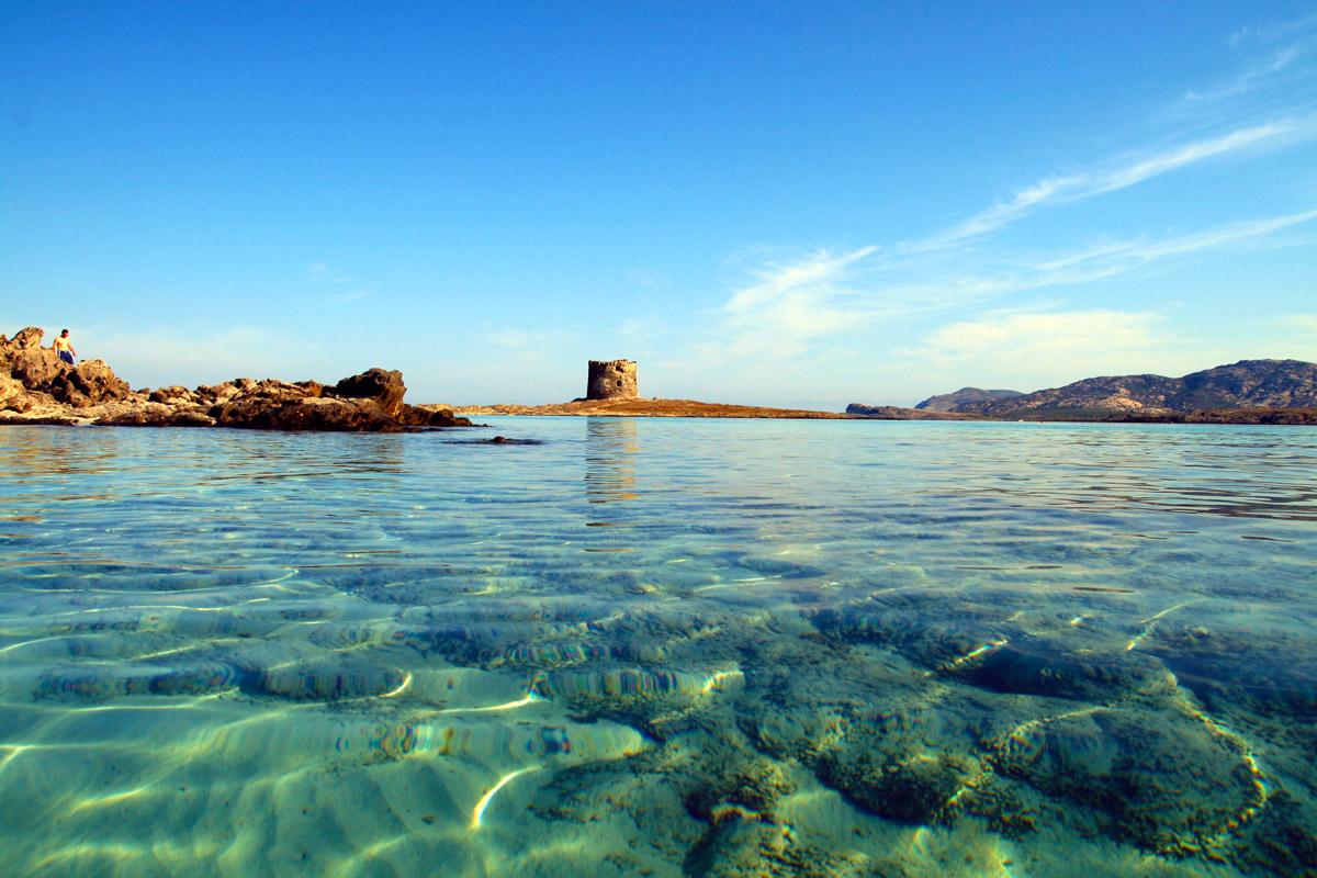 vacanza vela spiaggia della pelosa stintino sardegna